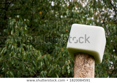 salt block for deers Stock photo © taviphoto