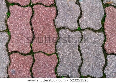 тротуар · бесшовный · текстуры · серый · цветок · четыре - Сток-фото © tashatuvango