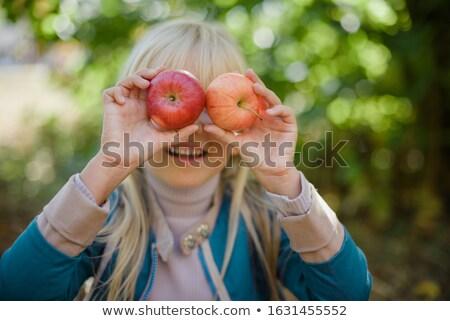 écologique pommes marché alimentaire nature automne Photo stock © Photooiasson