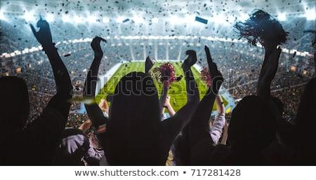 podniecony · piłka · nożna · fan · banderą · sportu · piłka · nożna - zdjęcia stock © anna_om