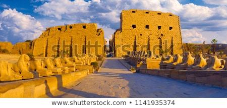 Duvar tapınak luxor Mısır sanat imzalamak Stok fotoğraf © eleaner