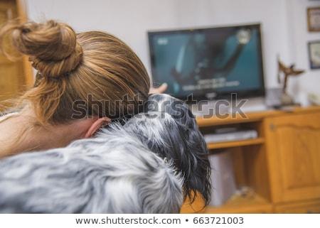 menina · televisão · mulher · jovem · assistindo · tv · sofá - foto stock © Giulio_Fornasar