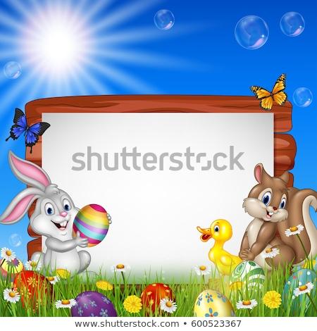 komik · yumurta · komik · bebek - stok fotoğraf © lightsource