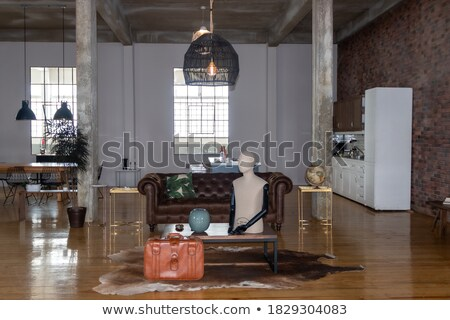Brown Leather Chairs in Upscale Living Room Stock photo © iofoto