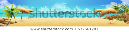 Playa tropical vector isla tropical palmeras agua paisaje Foto stock © -Baks-