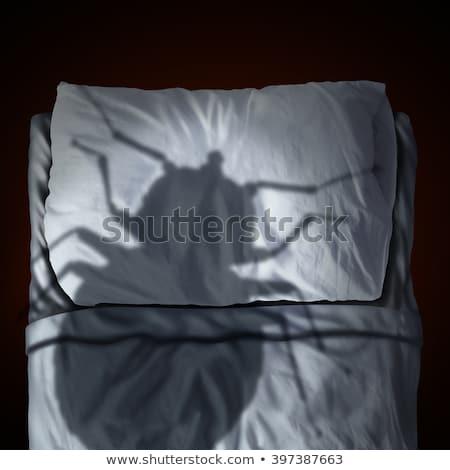 cama · bicho · macro · foto - foto stock © lightsource