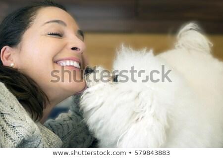 Girl his white curly Bichon Frise dog Stock photo © bezikus