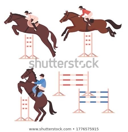 ridder · paard · zwaard · schild · Maakt · een · reservekopie - stockfoto © ensiferrum