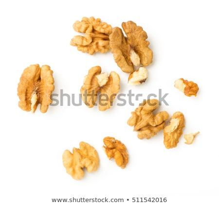 A walnut isolated on white. Stock photo © vapi