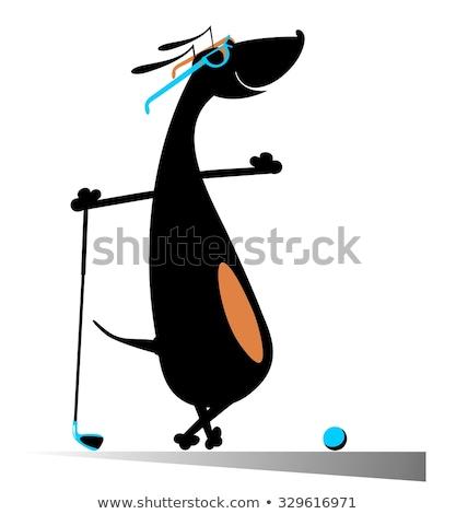 Cartoon такса гольф оригинальный искусства силуэта Сток-фото © tiKkraf69