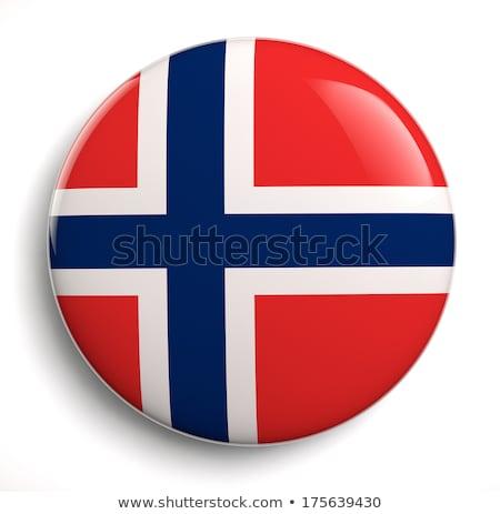 норвежский флаг овальный кнопки серебро изолированный Сток-фото © Bigalbaloo