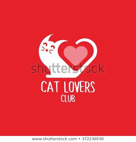 кошки логотип текста ухода котенка Сток-фото © gigi_linquiet