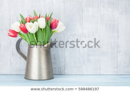 white spring tulips stock photo © klikk