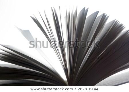 Open oud boek fantasie verbeelding onderwijs Stockfoto © photocreo