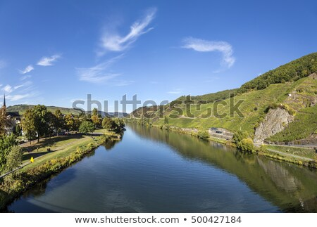 famous moselle landscape with ferry in trittenheim stock photo © meinzahn