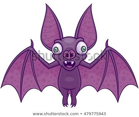 Vampiro bat vetor desenho animado ilustração Foto stock © fizzgig