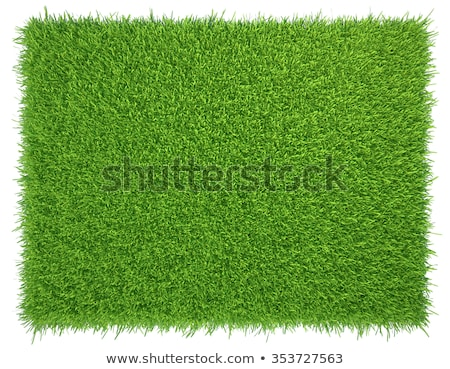 Herbe artificielle herbe domaine espace vert balle Photo stock © zurijeta