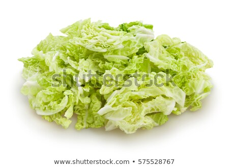 Chopped Chinese cabbage Stock photo © Digifoodstock