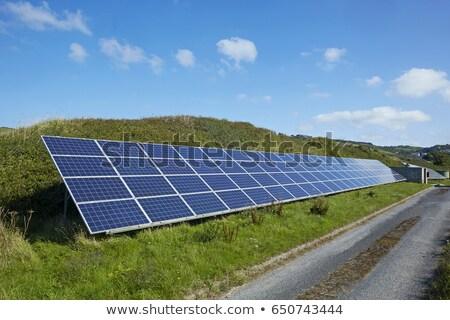 csökkenő · sorok · kék · fotovoltaikus · napelemek · nézőpont - stock fotó © Qingwa