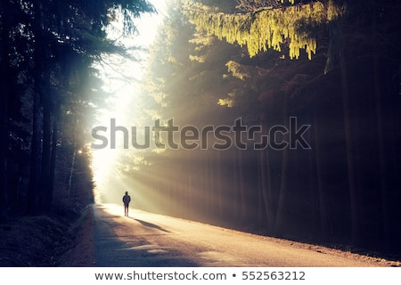 the ray of light in a nightmare Stock photo © psychoshadow
