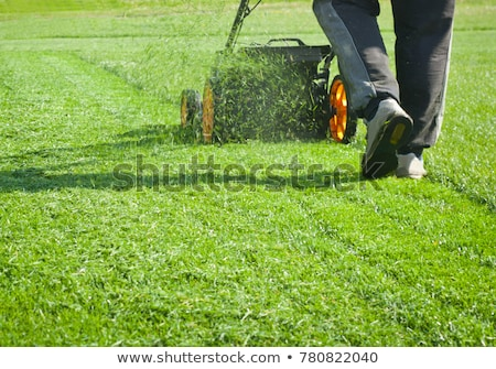 woman mowing lawn with grass mower stock photo © is2