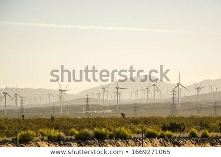 Wind turbine generators in California Stock photo © IS2