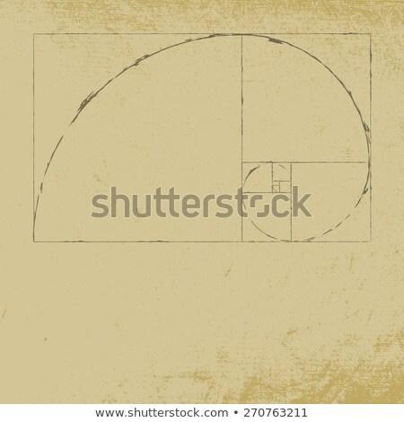 antigo · mármore · spiralis · grego · iônico · coluna - foto stock © benchart