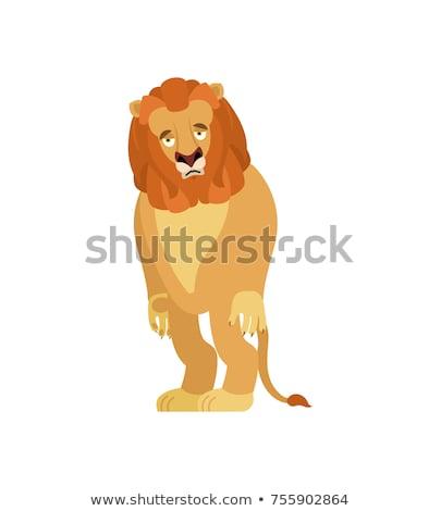 cute · león · Cartoon · vector · etiqueta · icono - foto stock © popaukropa