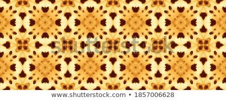 Abstrakten orientalisch floral arabisch Blume Stock foto © Terriana