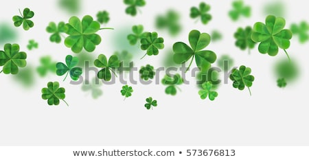happy st patricks day text lucky four leaf clover on green background stock photo © orensila