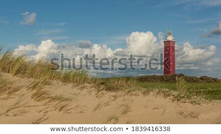 Westhoofd Lighthouse in Netherlands Stock photo © benkrut