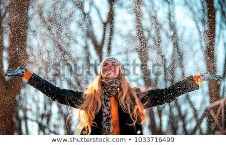 ensolarado · inverno · dia · parque · estrada · madeira - foto stock © Pozn
