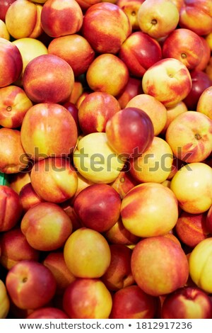 Red yellow nectarine abundance harvest background Stock photo © TasiPas