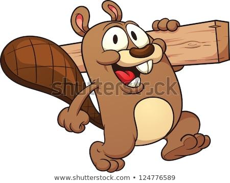 Karikatür kunduz yürüyüş örnek mutlu Stok fotoğraf © cthoman