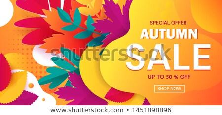Herbst Umsatz Bekanntmachung Banner Dekoration gelb Stock foto © alexaldo
