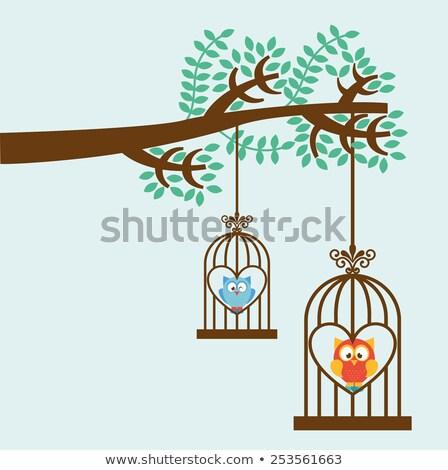 aves · primavera · casa · verão · pássaro · doce - foto stock © colematt