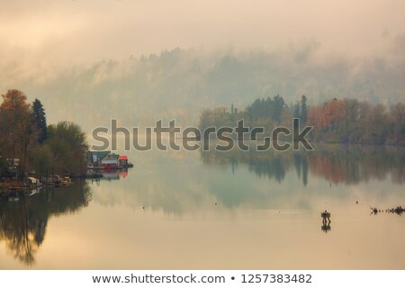 Floating Homes on the Willamette River Stock photo © davidgn