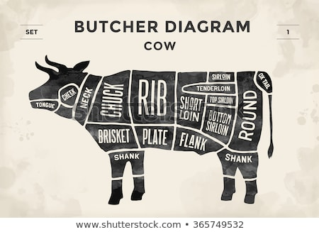 Vector beef cuts chart Stock photo © tele52
