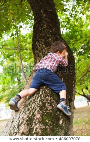 Stok fotoğraf: Erkek · tırmanma · yukarı · üç · açık · havada