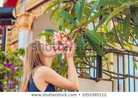 Mulher jovem turista thai templo phuket cidade Foto stock © galitskaya