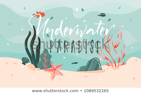 Cute mermaid and colorful coral reef Stock photo © colematt