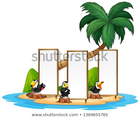 Toucan with fram island Stock photo © colematt
