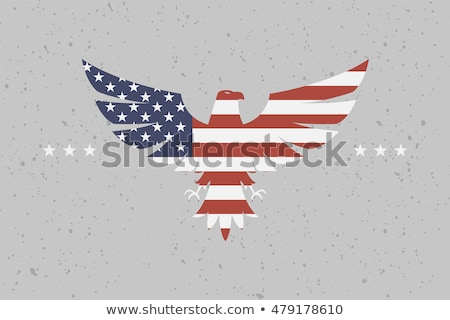 Falcon State flag Stock photo © grafvision