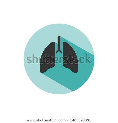 Lungs icon with shade on green circle Stock photo © Imaagio