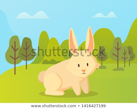 rabbit with long ears sitting green grass vector stock photo © robuart