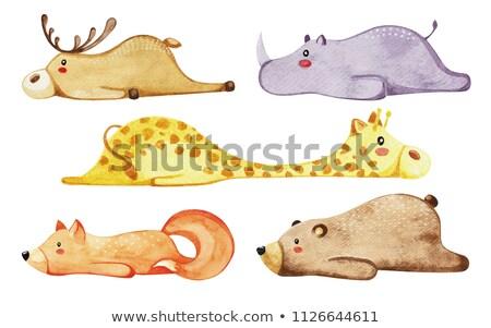 набор различный милые животные ленивый животные акварель Сток-фото © Arkadivna