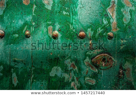 Ibiza Eivissa downtown Dalt Vila green door  Stock photo © lunamarina