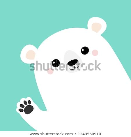 Cute grappig ijsbeer illustratie vector eps Stockfoto © rwgusev
