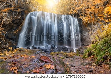 водопада осень Осенний сезон воды лес природы Сток-фото © vichie81