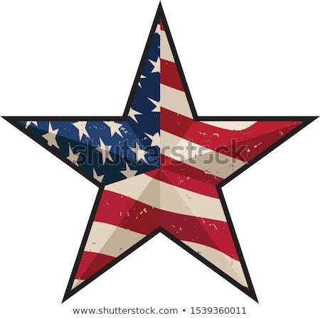 Amerikai hazafias csőr csillag vektor klasszikus Stock fotó © jeff_hobrath